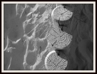 olibrius - contrepoints - dune